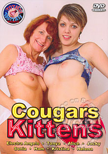 Cougars & Kittens Box Cover