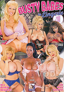 Busty Babes In Lingerie #1 Box Cover