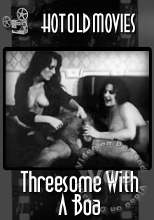 Threesome With A Boa Box Cover