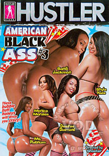 American Black Ass 3 Box Cover