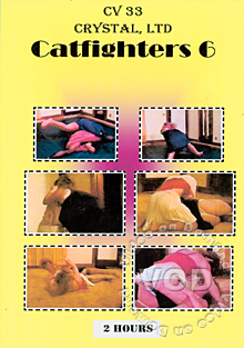 Catfighters 6 Box Cover