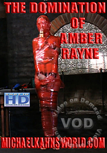The Domination Of  Amber Rayne Box Cover