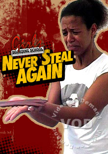 Never Steal Again Box Cover