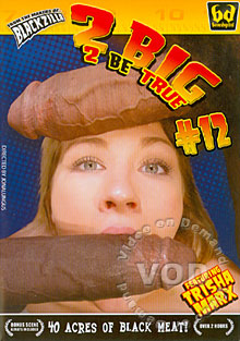 2 Big 2 Be True #12 Box Cover