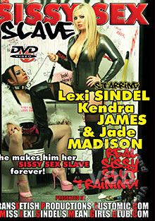 Sissy Sex Slave Box Cover