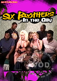 Six Brothers In The Ally Box Cover