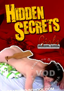 Hidden Secrets Box Cover
