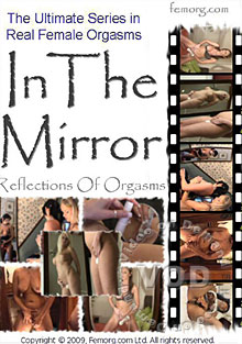 In The Mirror Box Cover