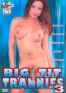 Big Tit Trannies #3 Box Cover