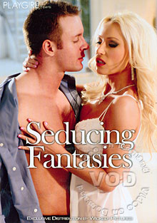 Seducing Fantasies Box Cover