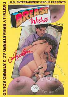 Breast Wishes Vol. 4