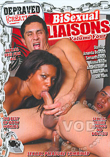 Bisexual Liaisons Volume Four Box Cover