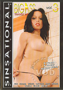 Big Ass Transx Winkers 3 Box Cover