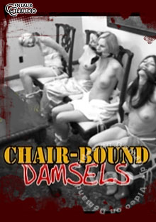 Chair Bound Damsels Box Cover