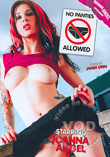 No Panties Allowed Box Cover