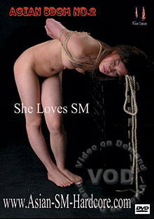 Asian BDSM No. 2 - She Loves SM Box Cover