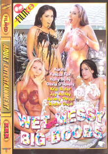 Wet and Messy Big Boobs Box Cover