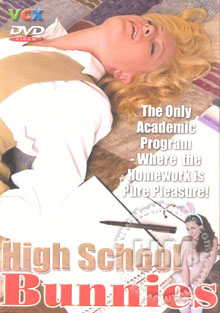 High School Bunnies Box Cover
