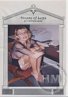 House of Legs #17 - Office Legs Box Cover