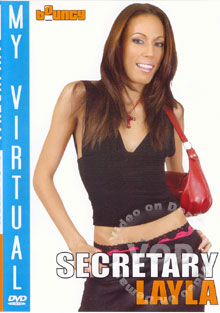 My Virtual Secretary - Layla Box Cover