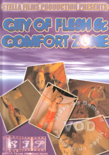 City Of Flesh 5 - Comfort Zone Box Cover