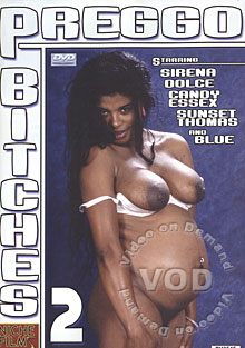 Preggo Bitches 2 Box Cover
