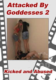 Attacked By Goddesses 2 Box Cover