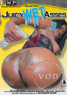 Juicy Wet Asses 3 Box Cover