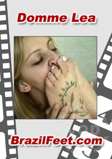 Domme Lea Box Cover