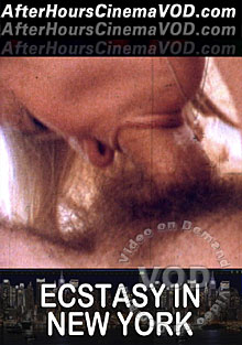 Ecstasy In New York Box Cover