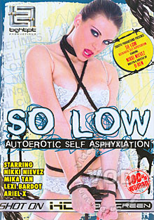 So Low Box Cover
