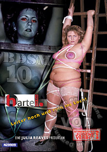BDSM 10 Box Cover