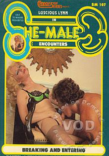 She Male Encounters - Breaking & Entering Box Cover