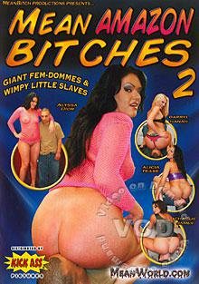 Mean Amazon Bitches 2 Box Cover