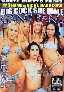 Big Cock She Male Gang Bang Box Cover