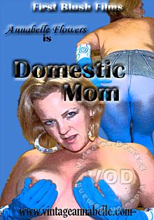 Domestic Mom Box Cover