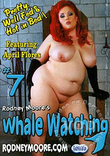 Whale Watching 7 Box Cover