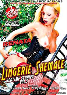 Lingerie Shemale Bedtime Stories Vol. 5 Box Cover