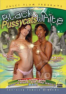 Black And White Pussycats Box Cover
