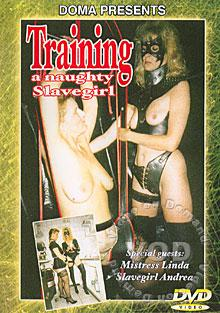 Training A Naughty Slavegirl Box Cover