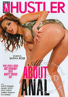 All About Anal Box Cover