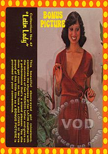 Collection 47 - Latin Lady Box Cover