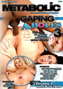 Gaping A-Holes 3 Box Cover