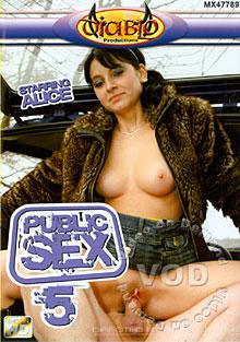 Public Sex 5 Box Cover