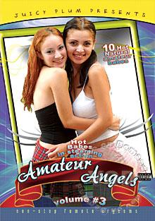 Amateur Angels Volume #3 Box Cover