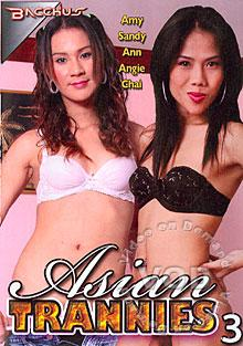 Asian Trannies 3 Box Cover