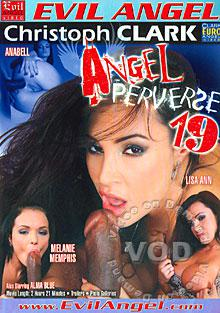Angel Perverse 19 Box Cover