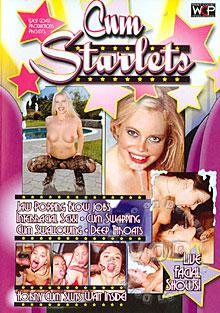 Cum Starlets Box Cover