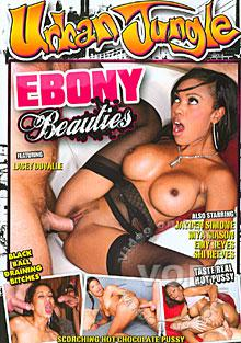 Ebony Beauties Box Cover