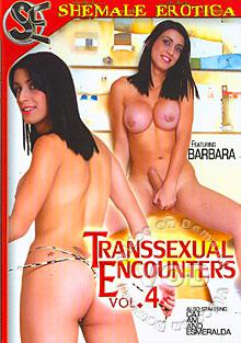 Transsexual Encounters Vol. 4 Box Cover